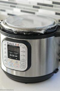 Instant pot idli batter fermentation