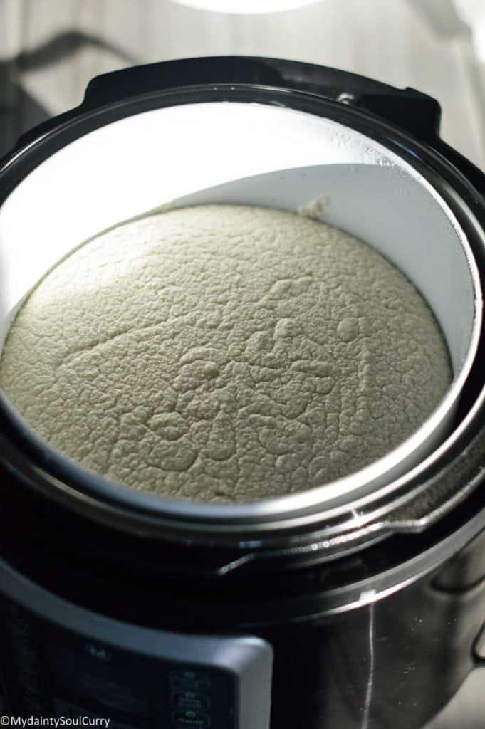 Batter fermented in instant pot